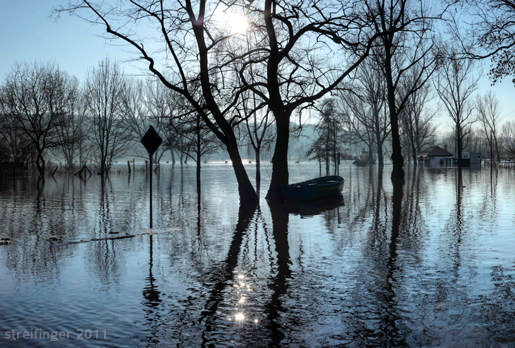 Hochwasser-Brachwitz-Streifinger-2011-700