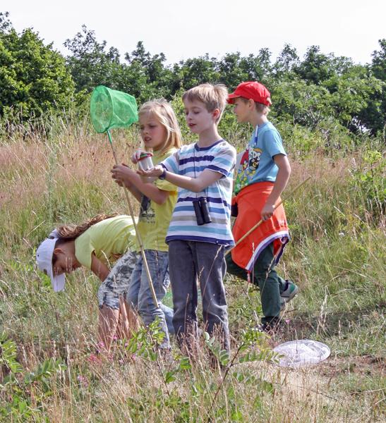 SchülerInnen aus Oppin beim GEO-Tag der Artenvielfalt 2014