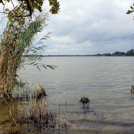 am Großen Teich in Torgau - Europäisches Vogelschutzgebiet, NABU-Naturschutzstation