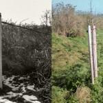 Überackerung von Wegrandsteifen und Grabenböschungen