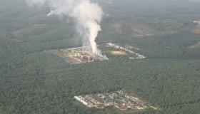 Palmölplantage auf Sumatra Bildquelle: globalfilm