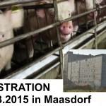 Demo vor dem Schweinehochhaus in Maasdorf