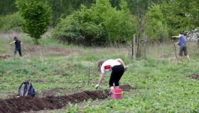 solidarische Landwirtschaft in Halle Aktivist-innen bei der Arbeit