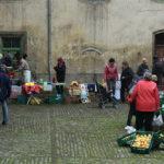 Streuobsttag im Schloss Dieskau