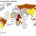 Globale-Reihe zeigte Film über Land-Grabbing und die Folgen