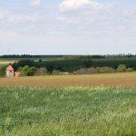 Umwelt und Klimawandel im Unteren Saaletal