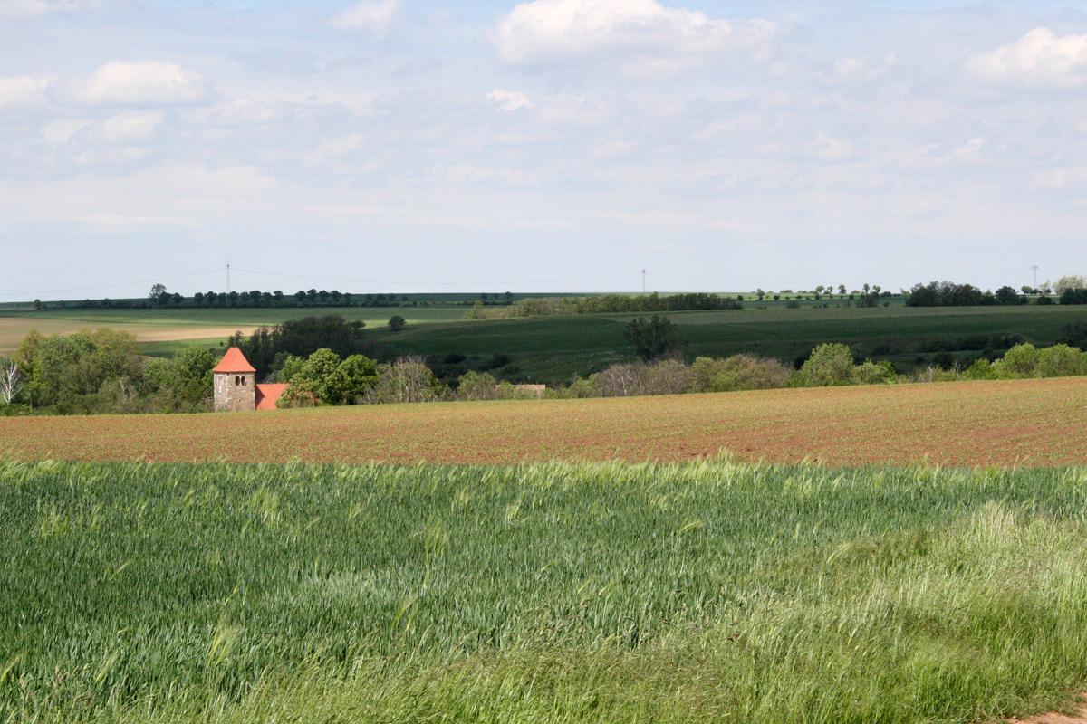 Thaldorf im Unteren Saaleta