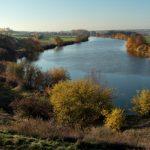 Autobahn A 143 - ein Rückschritt für Naturschutz und Klimaschutz | Pressemitteilung des NABU