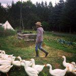 Neustart in der Saaleaue – Besuch in der Ackerbürgerei