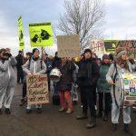 Ein Stich gegen Natur, Umwelt, Klima und Vernunft
