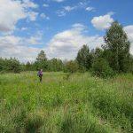 AHA sieht in der früheren Spülasche-Deponie zwischen Halle und Sennewitz einen sehr sensiblen Landschaftsbereich