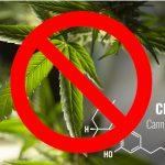 """Kann CBD als """"Droge"""" verboten werden?"""